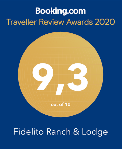 booking award 2020 Fidelito