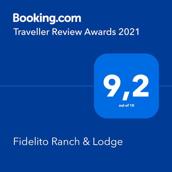 traveller review award 2021 booking.com